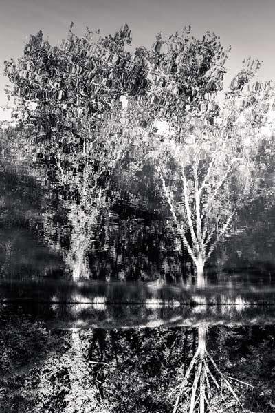 hoto du Lac du Moulin de Charlot